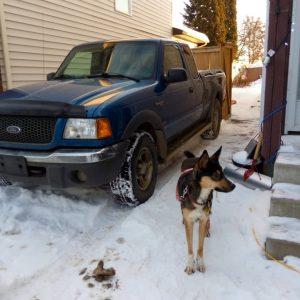 Our new truck Ranger!